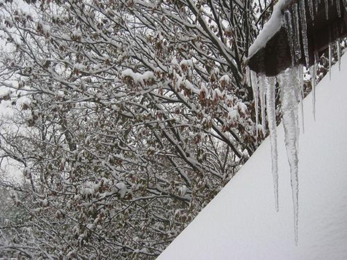 greg_walters_winter