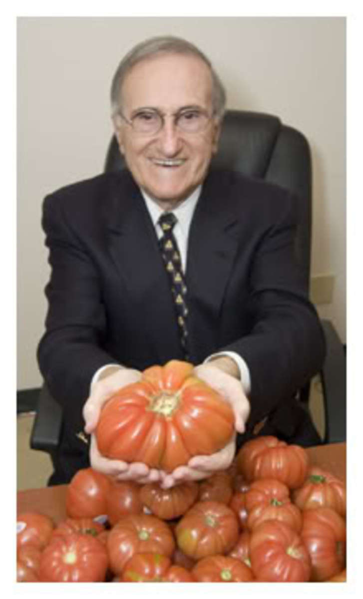 tomato41