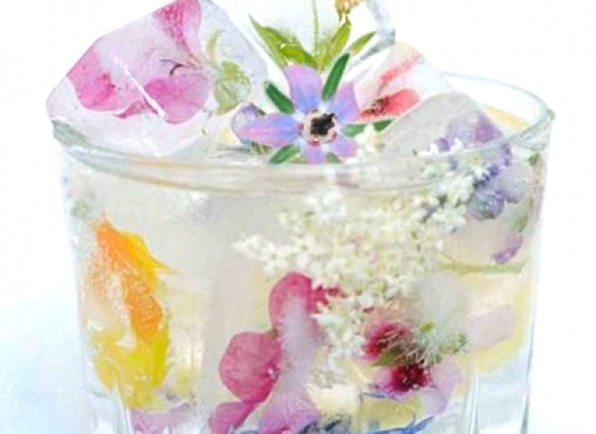 elderflower-greenbride-greenbride