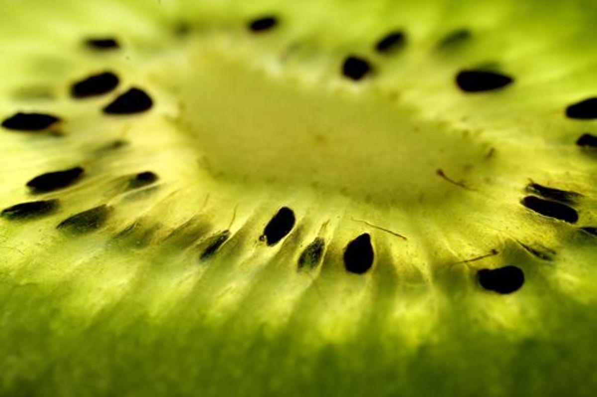 kiwi-ccflcr-Amagill