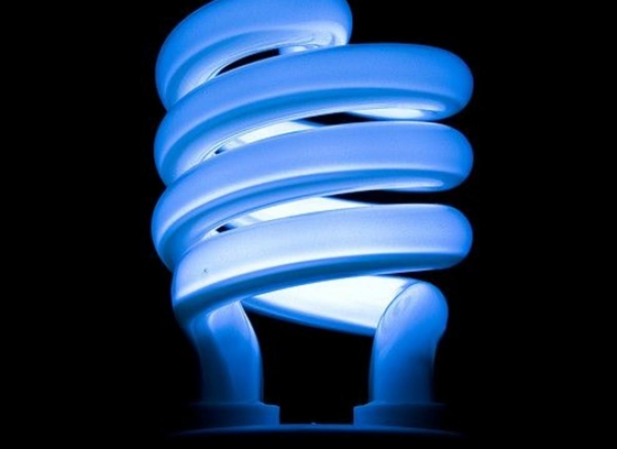 lightbulb_ccfler_-Tiago_Daniel