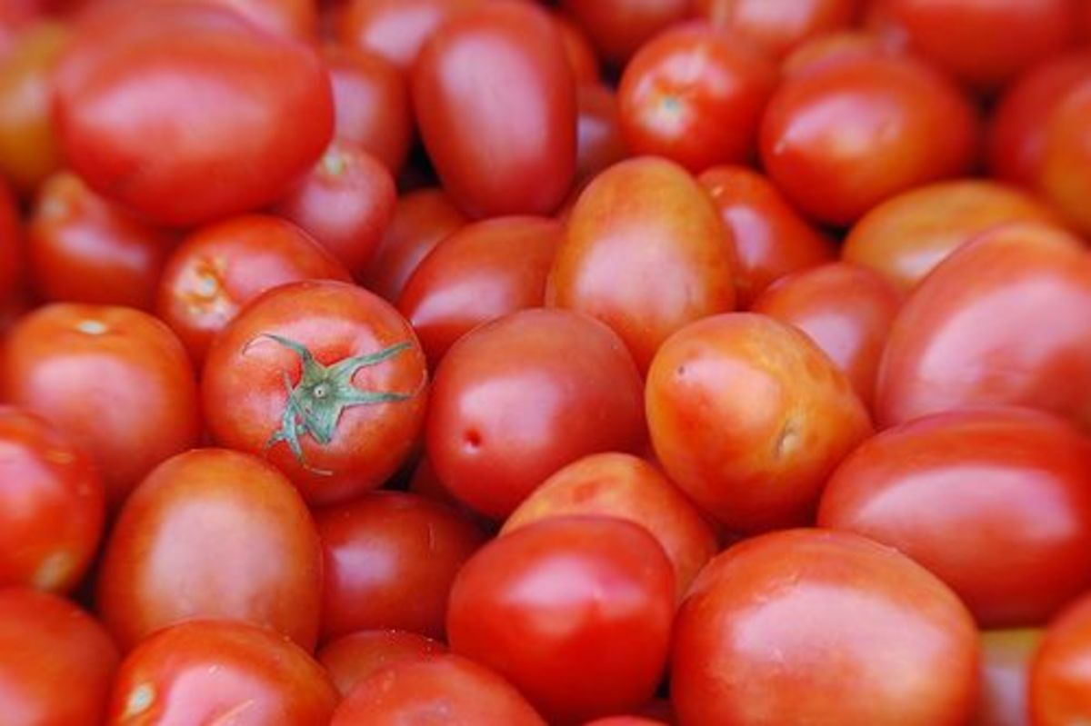 tomatoes-ccflcr-zoom-zoom