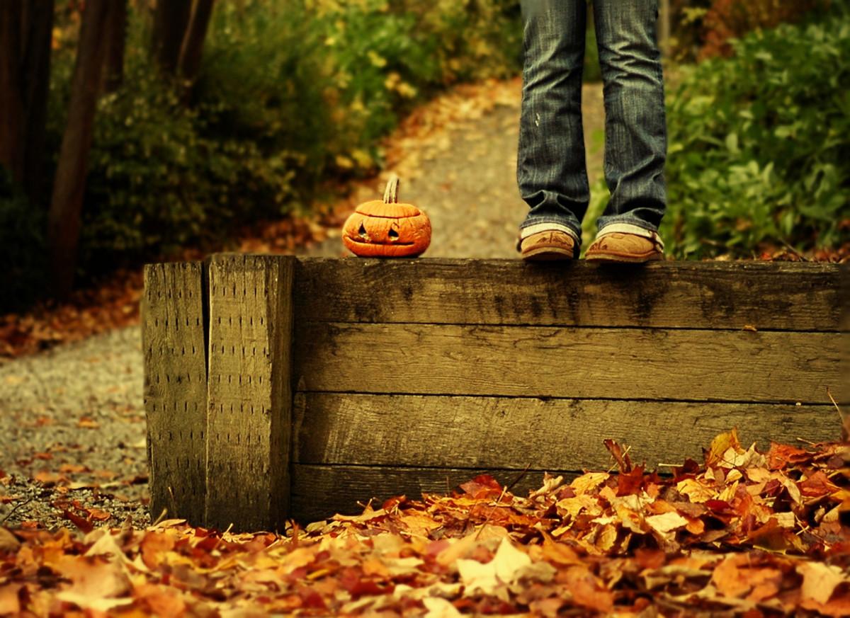 No-carve cool pumpkin ideas.