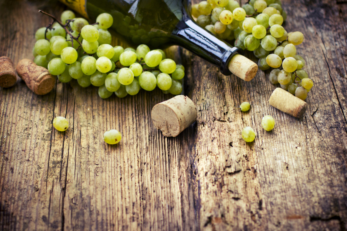 Is Organic Wine Better than Conventional? The Surprising (Objective!) Answer