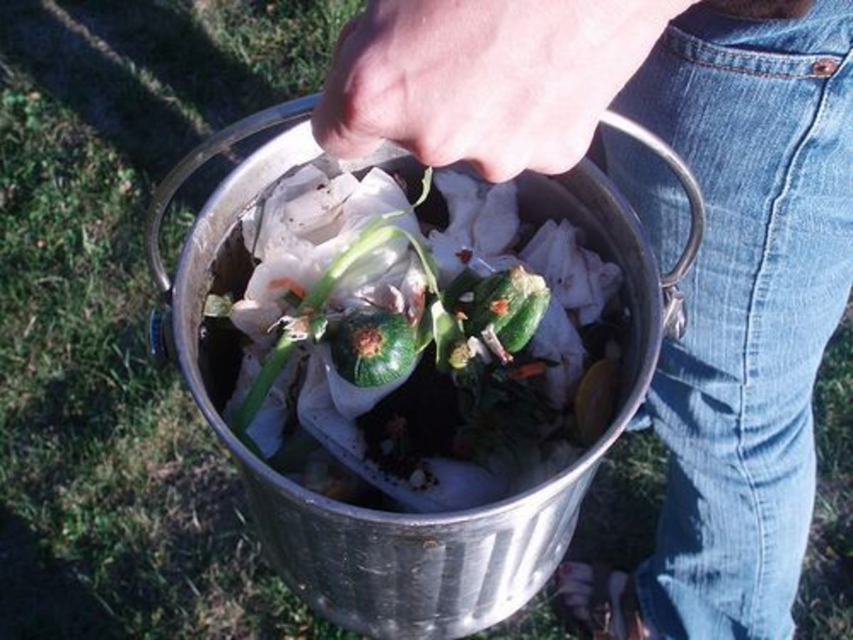 compost-ccflcr-prettypooeater