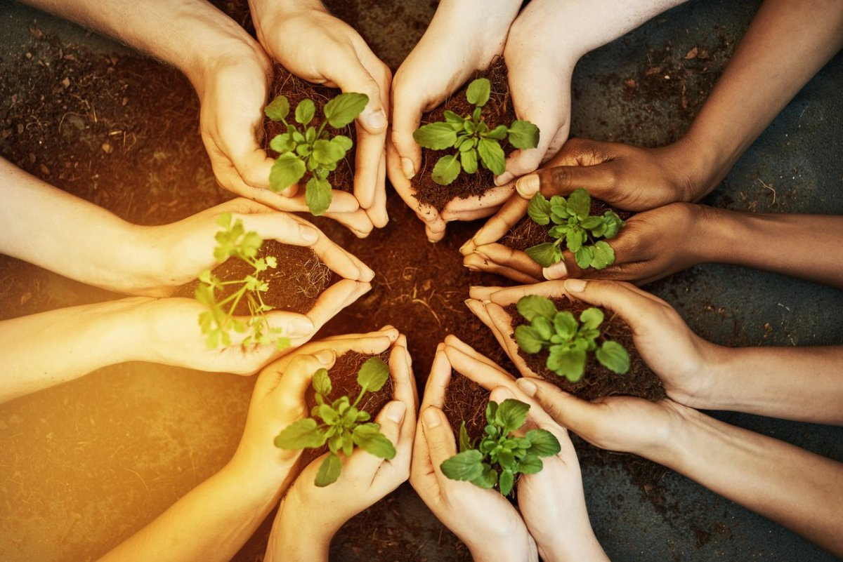 It's 2017 and the Green Movement Still Lacks Diversity