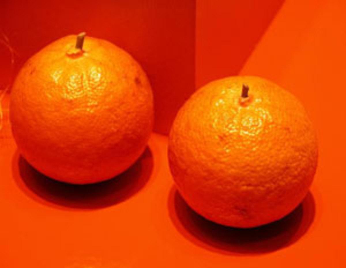 tangerine-morgf1