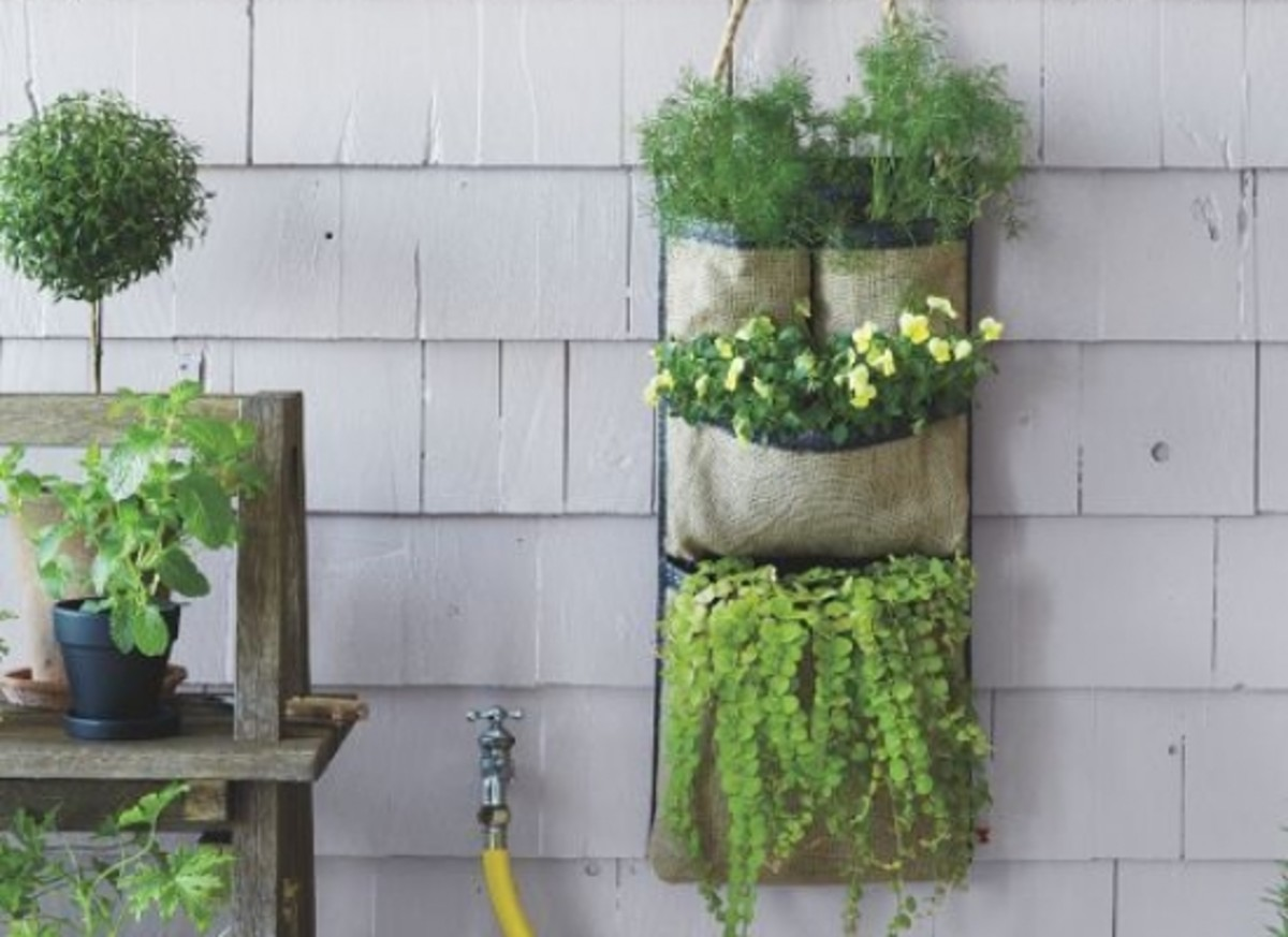 hanging-gardens-ccfl