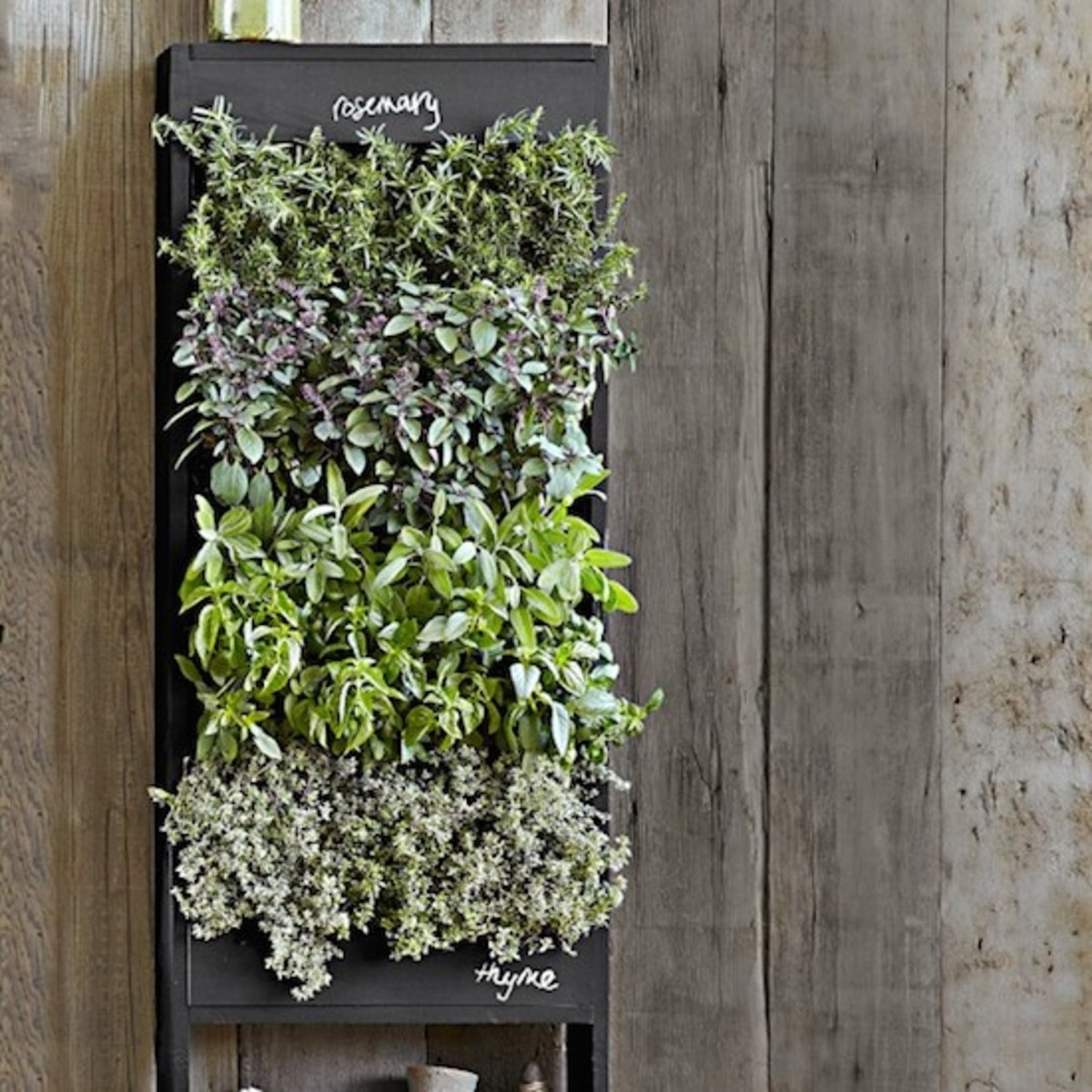 6 Verdant And Wonderful Ideas For Vertical Gardens