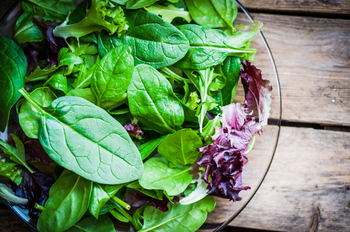 Say Goodbye to Bagged Lettuce and Hello to Growing Your Own Damn Salad