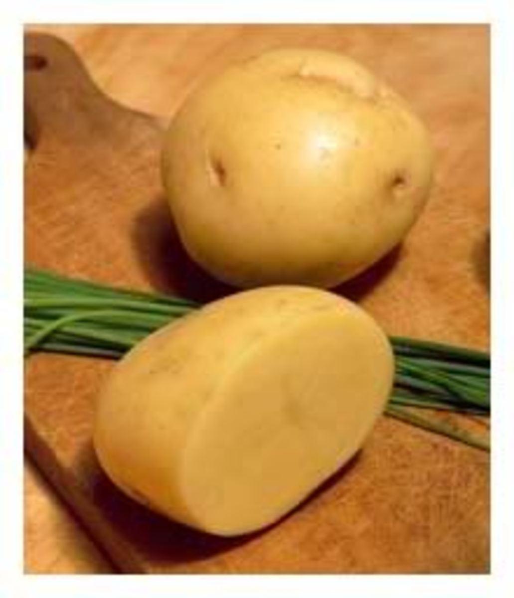 yellowpotato1
