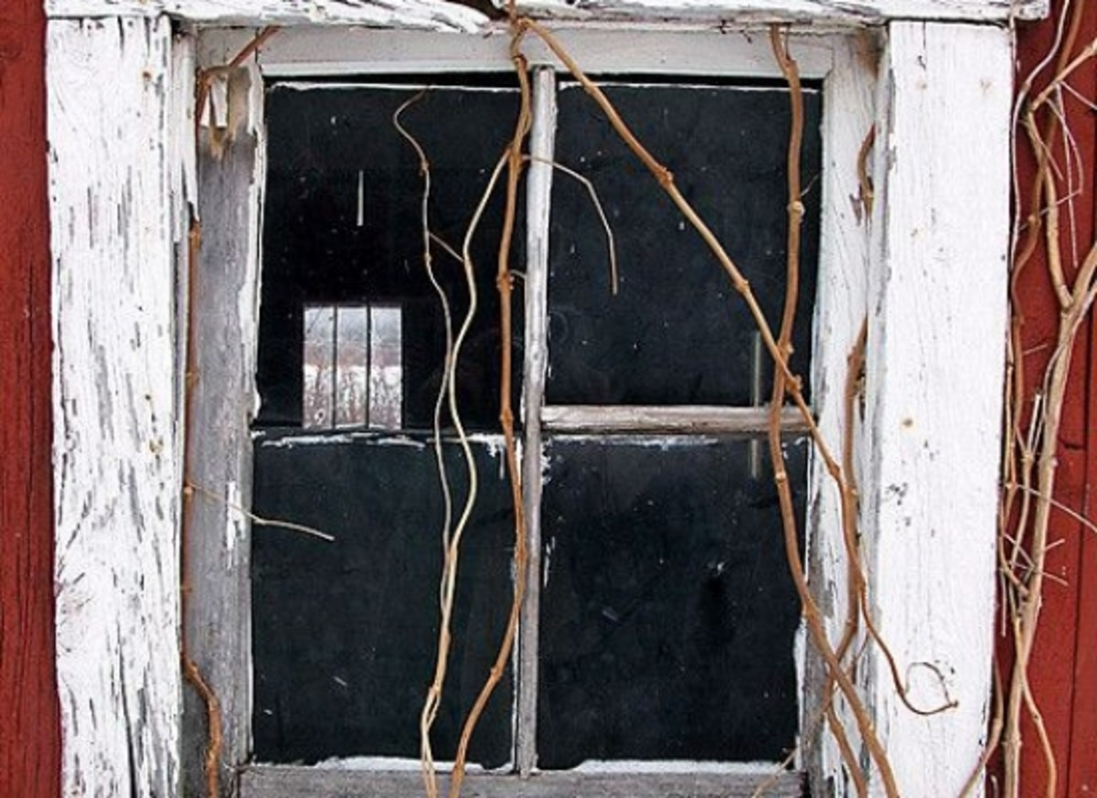 window-ccflcr-aunto