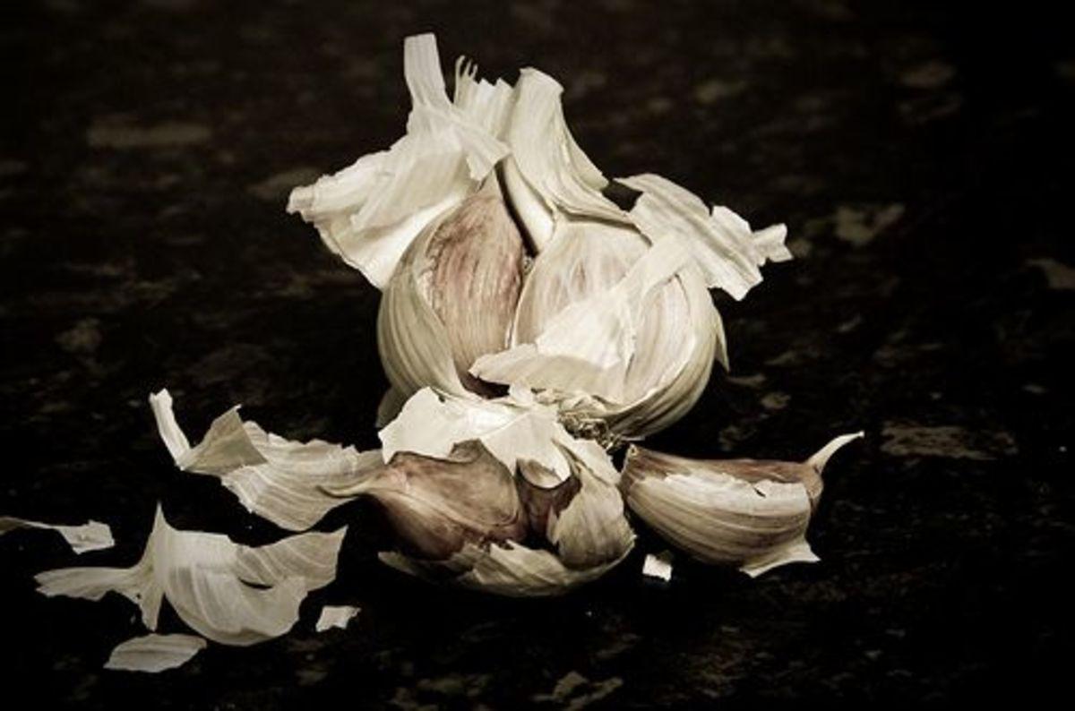 garlic-ccflcr-MrB