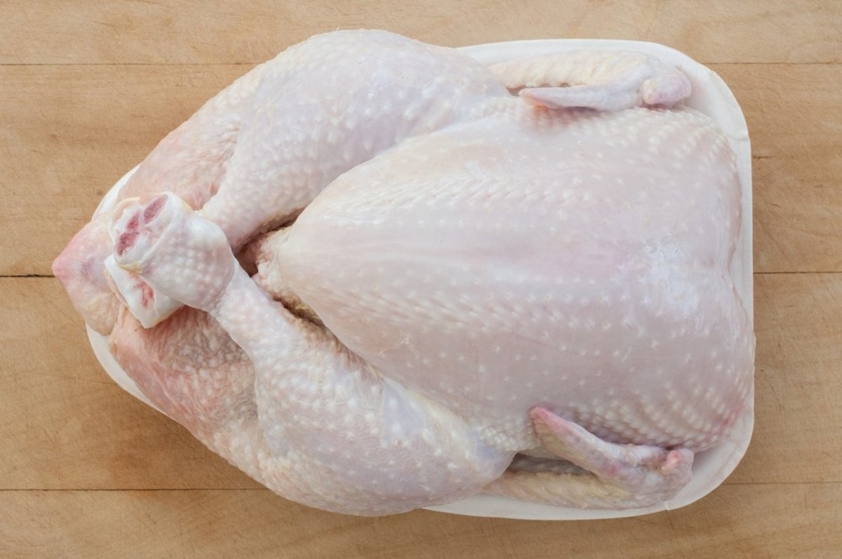 salmonella bacteria is frequently present in chicken