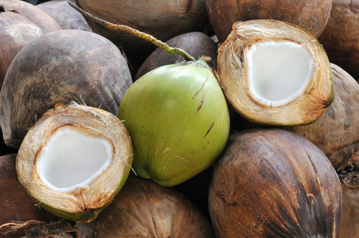 America is Cuckoo for Coconut Water: Healthy Drink or Gimmick? Behind the Label