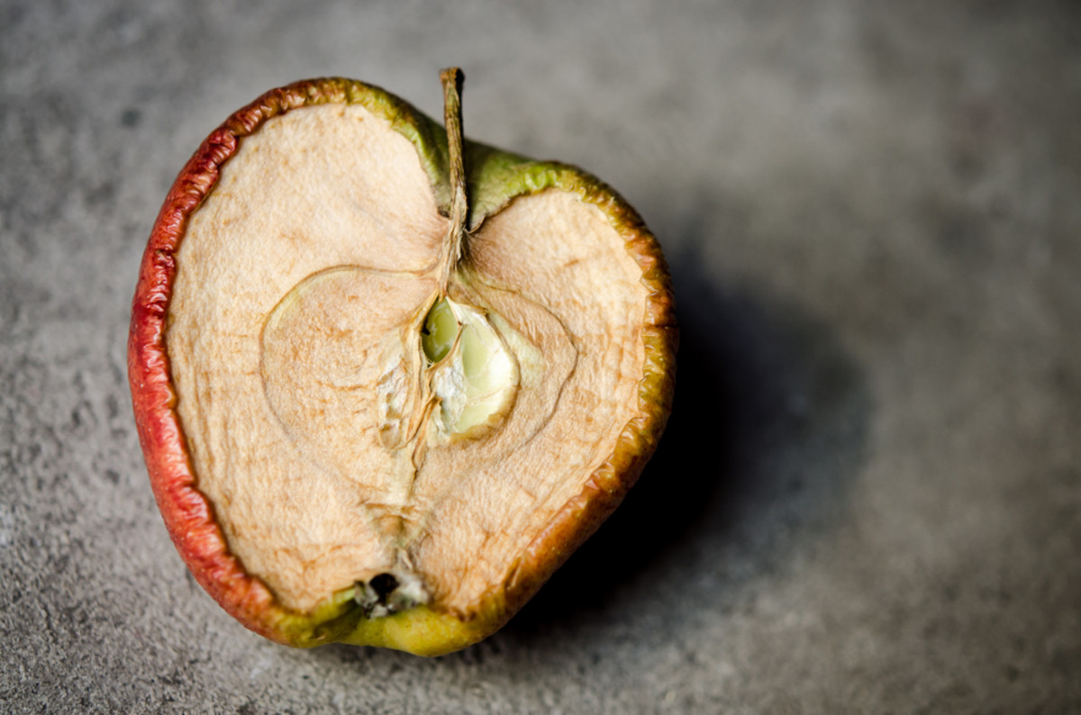sustainable packaging to reduce food waste