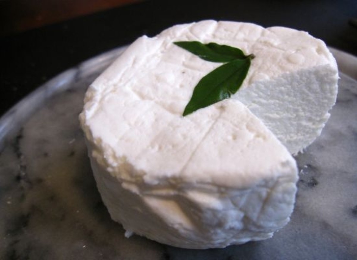 goatcheese-ccflcr-madame_fromage