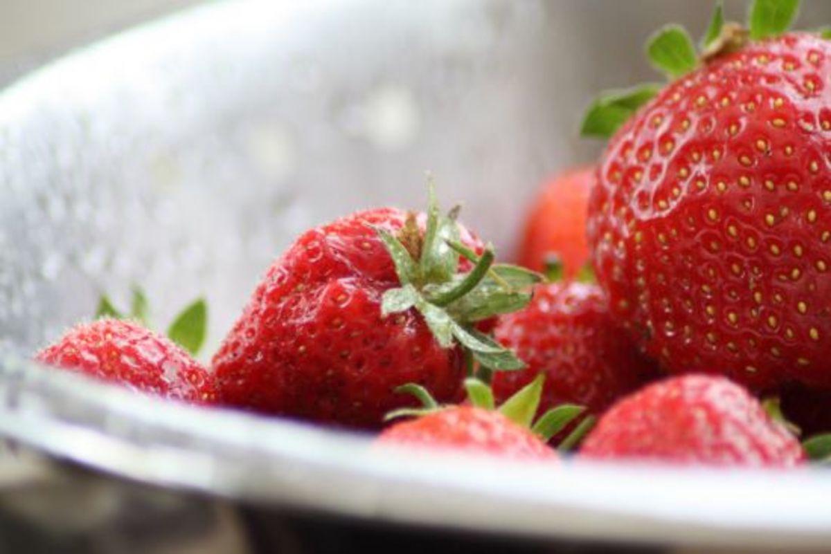 strawberry-ccflcr-manchester-monkey