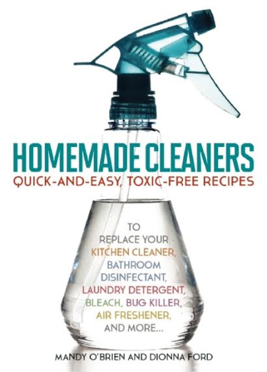 homemade cleaner photo