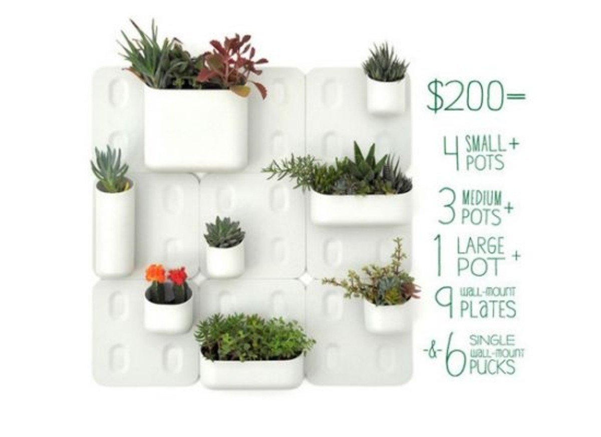 5 Innovative Indoor Garden Designs Organic Authority