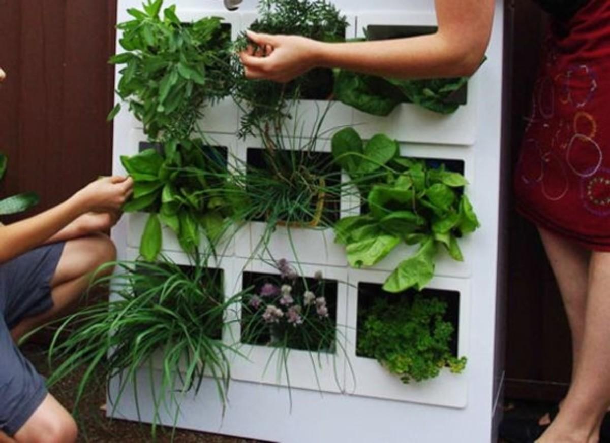 5 Innovative Indoor Garden Designs Organic Authority