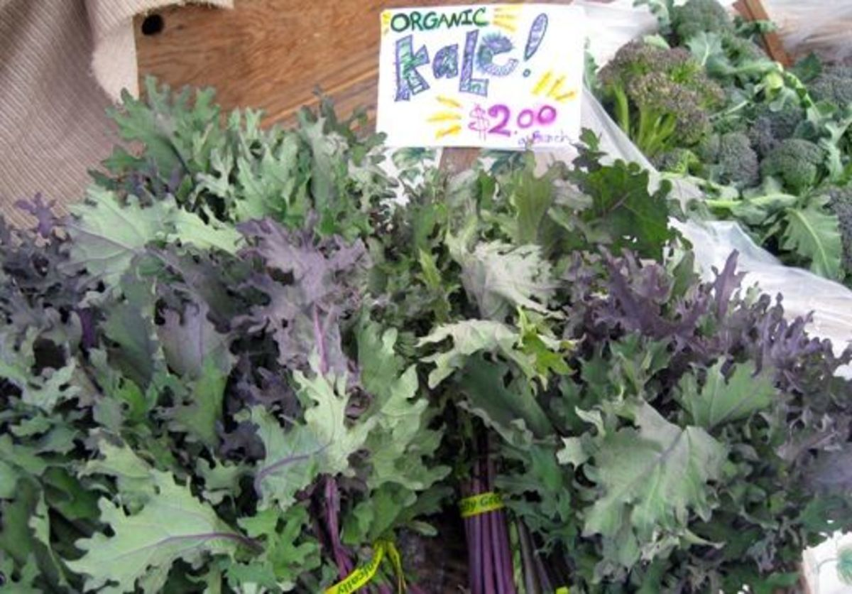 orgkale-ccflcr-summerrecipes