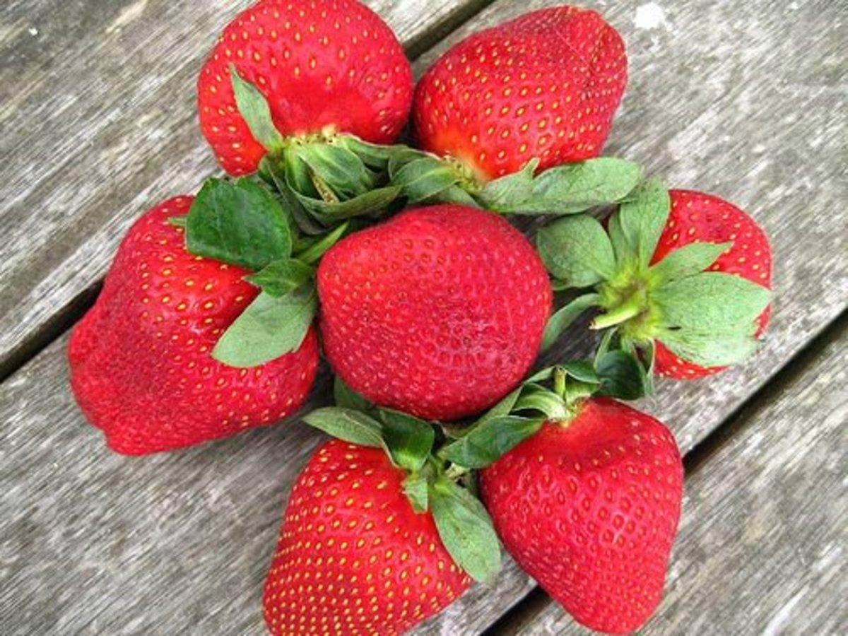 strawberries-ccflcr-kiwinz