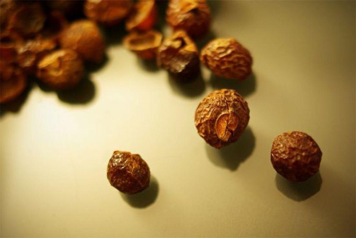 soap-nuts-ccflcr-Timo-Kirkkala