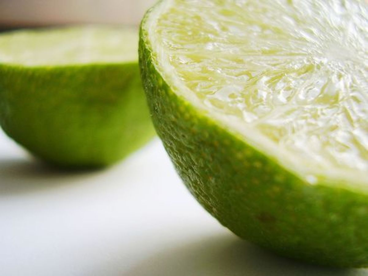 lime-ccflcr-tamburix