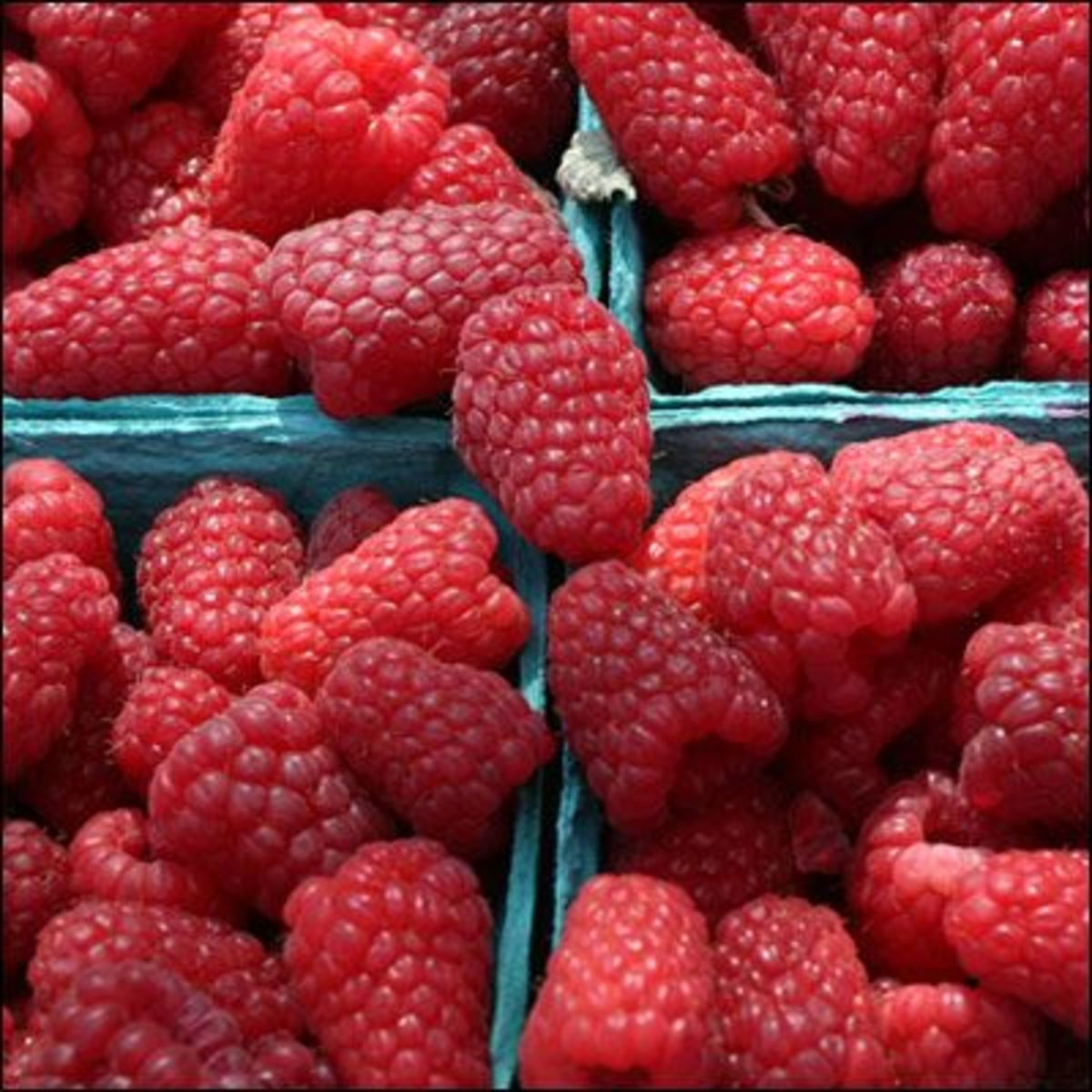 raspberries-ccflcr-lagrande