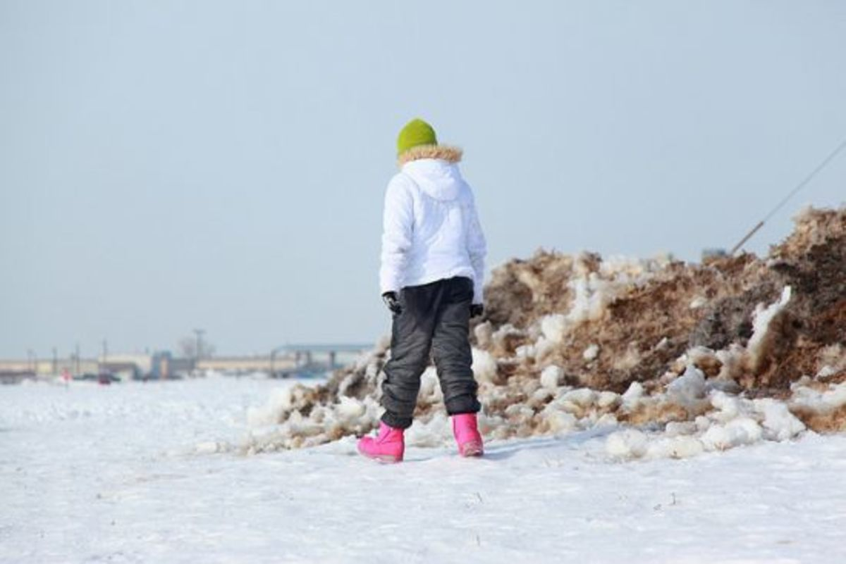 winterwalk_DSharonPruitt
