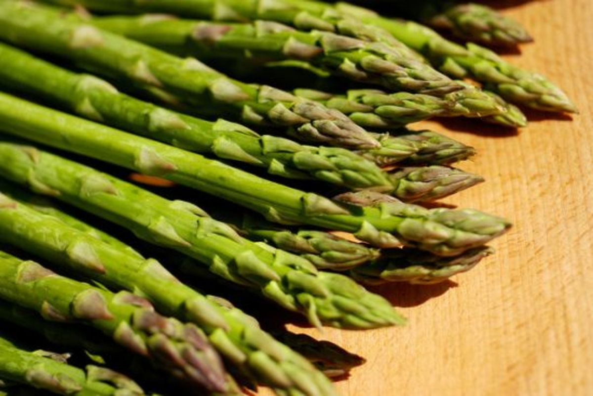 asparagus-ccflcr-SkanskaMatupplevelser