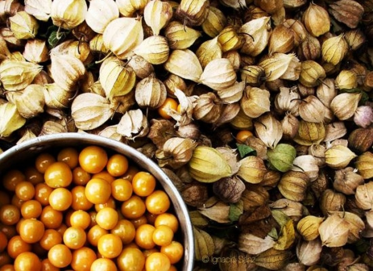 gooseberries-goldenberries-superfoods-ccfl