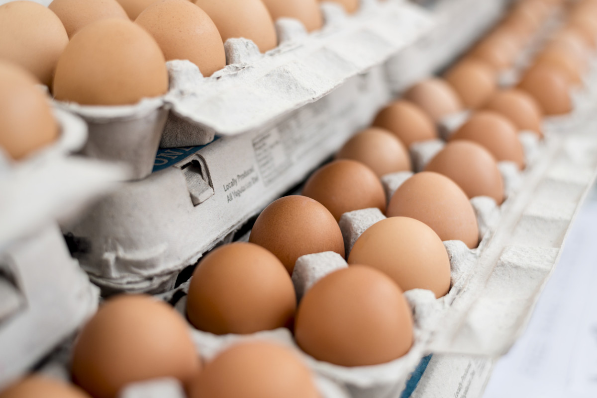 U.S. Egg Prices to Rise in 2018
