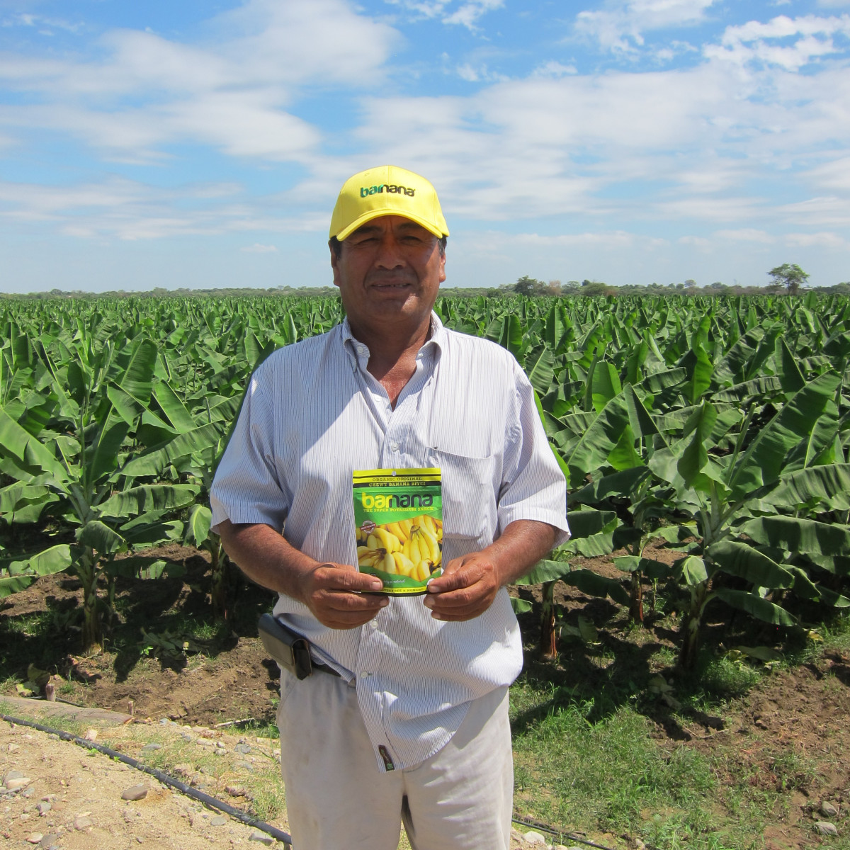 A banana farmer holding up Barnanas