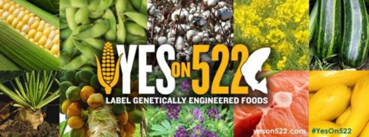 522 gmo labeling washington
