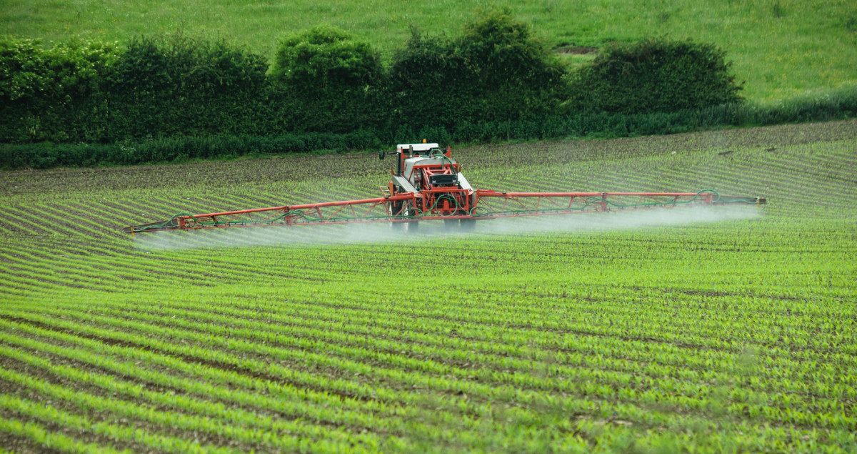 Global Herbicide Market Expected to Reach $34.10 Billion by 2022 - Organic  Authority
