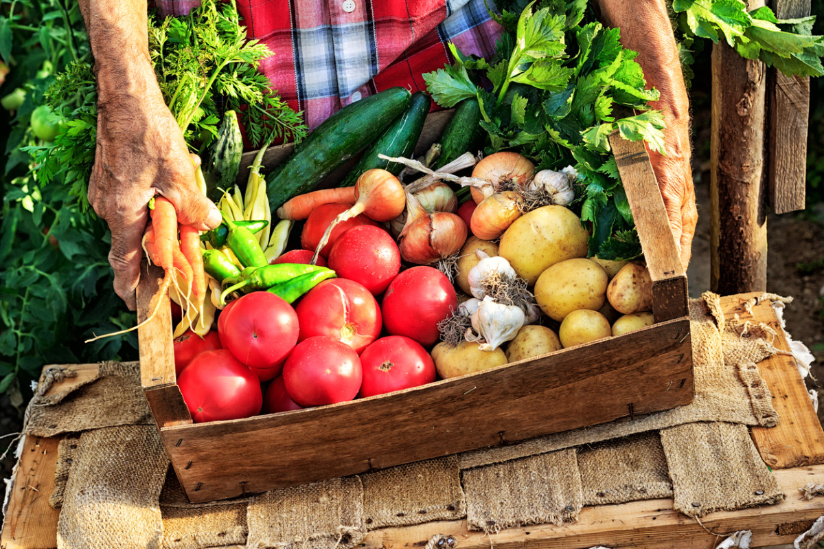 global organic food beverages market The global organic food & beverages market (2016-2022) report has been added to research and markets' offering organic foods are produced by comply the standards of organic farming in other.