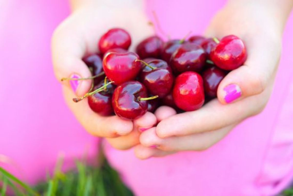 cherries-ccflcr-pinksherbetphotography