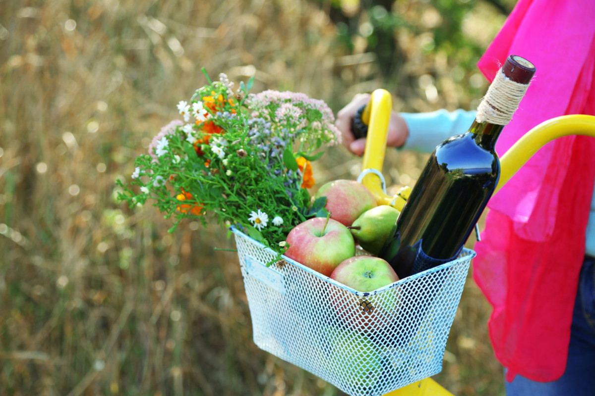 food waste solution