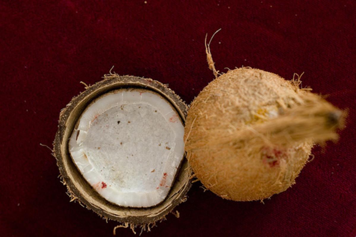 healthy coconut palm sugar
