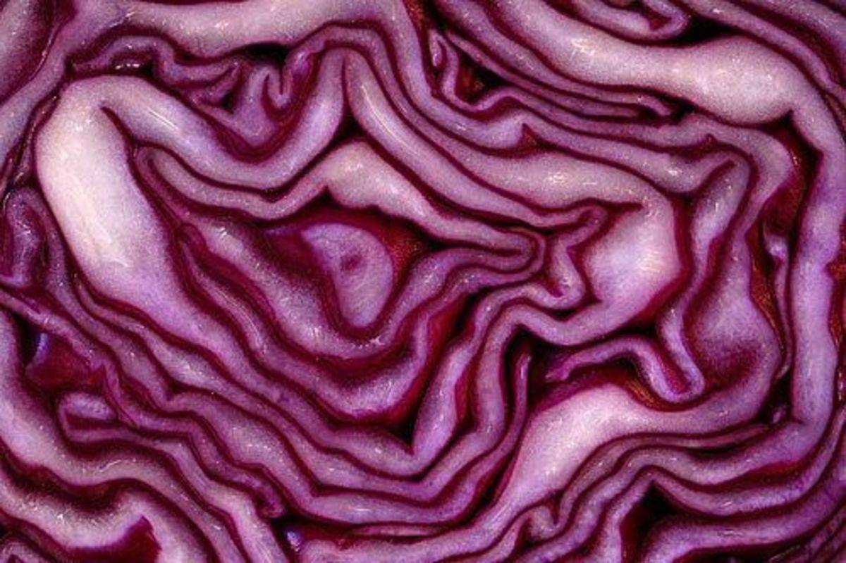 redcabbage-ccflcr-rosselliot