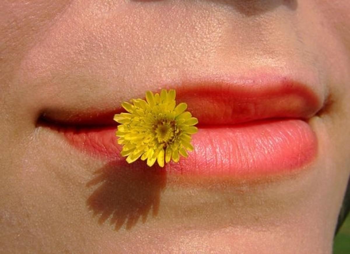 lips-ccflcr-hamedsaber