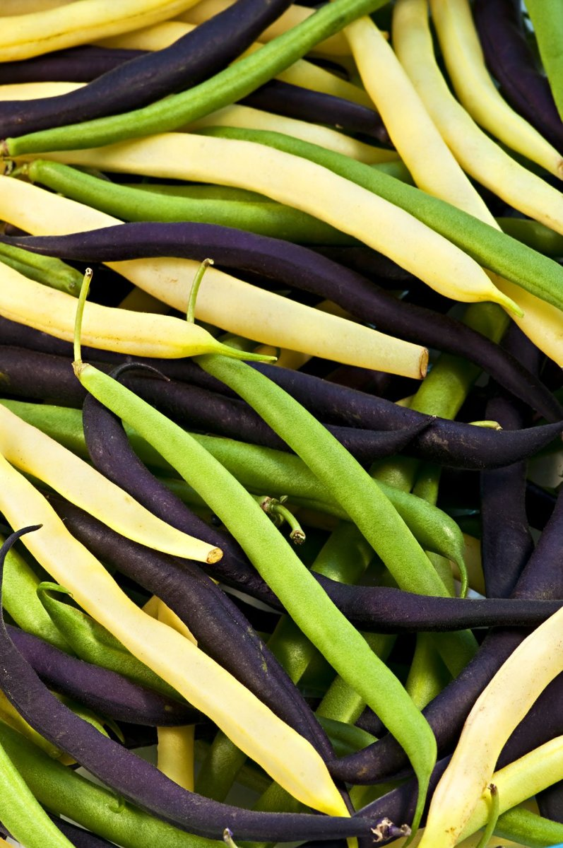 Purple, yellow, and green beans