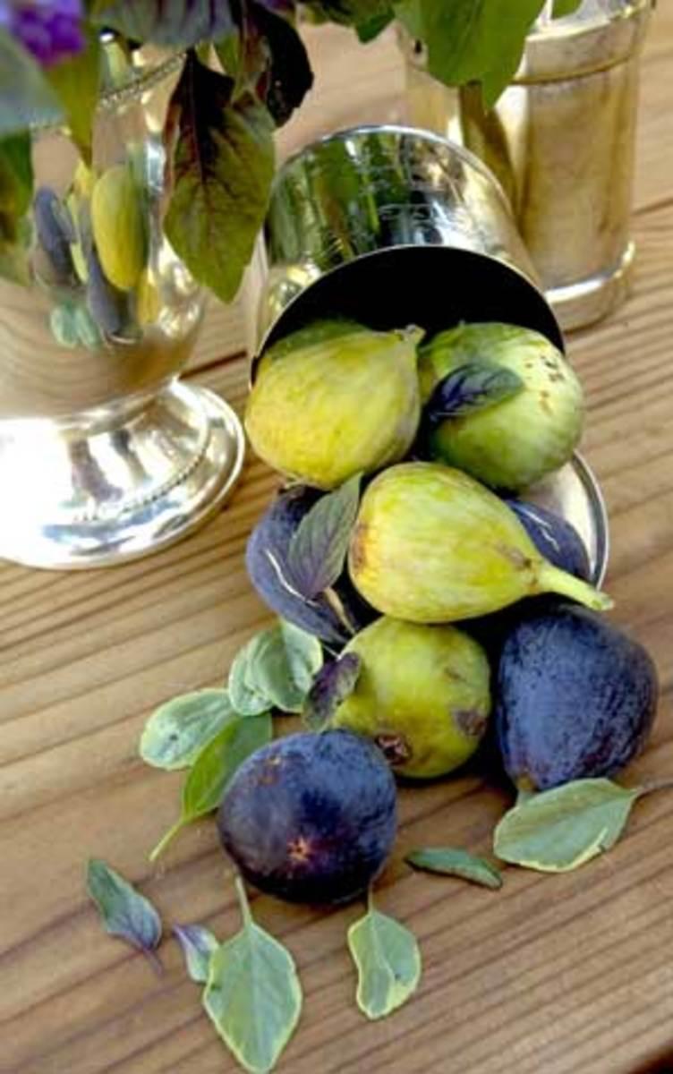 fig-silver1