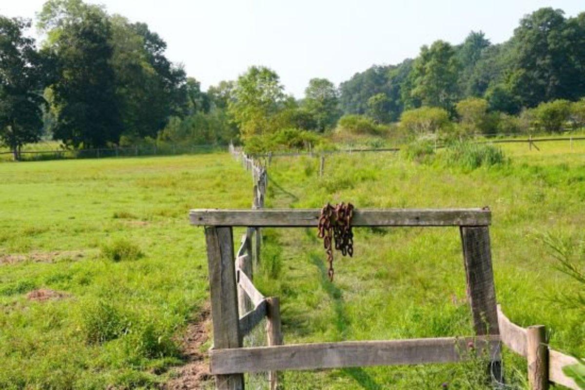 fence-jillslibrary-jillettinger