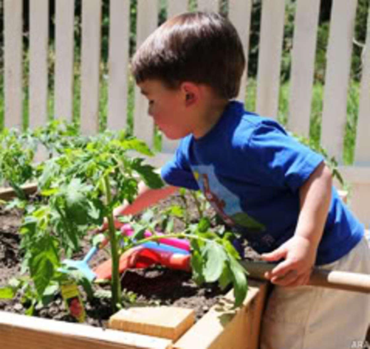 junior-gardener1