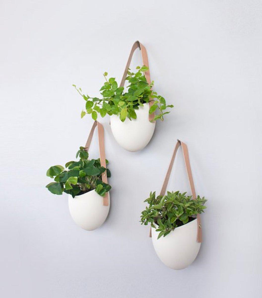 porcelainleatherplanters