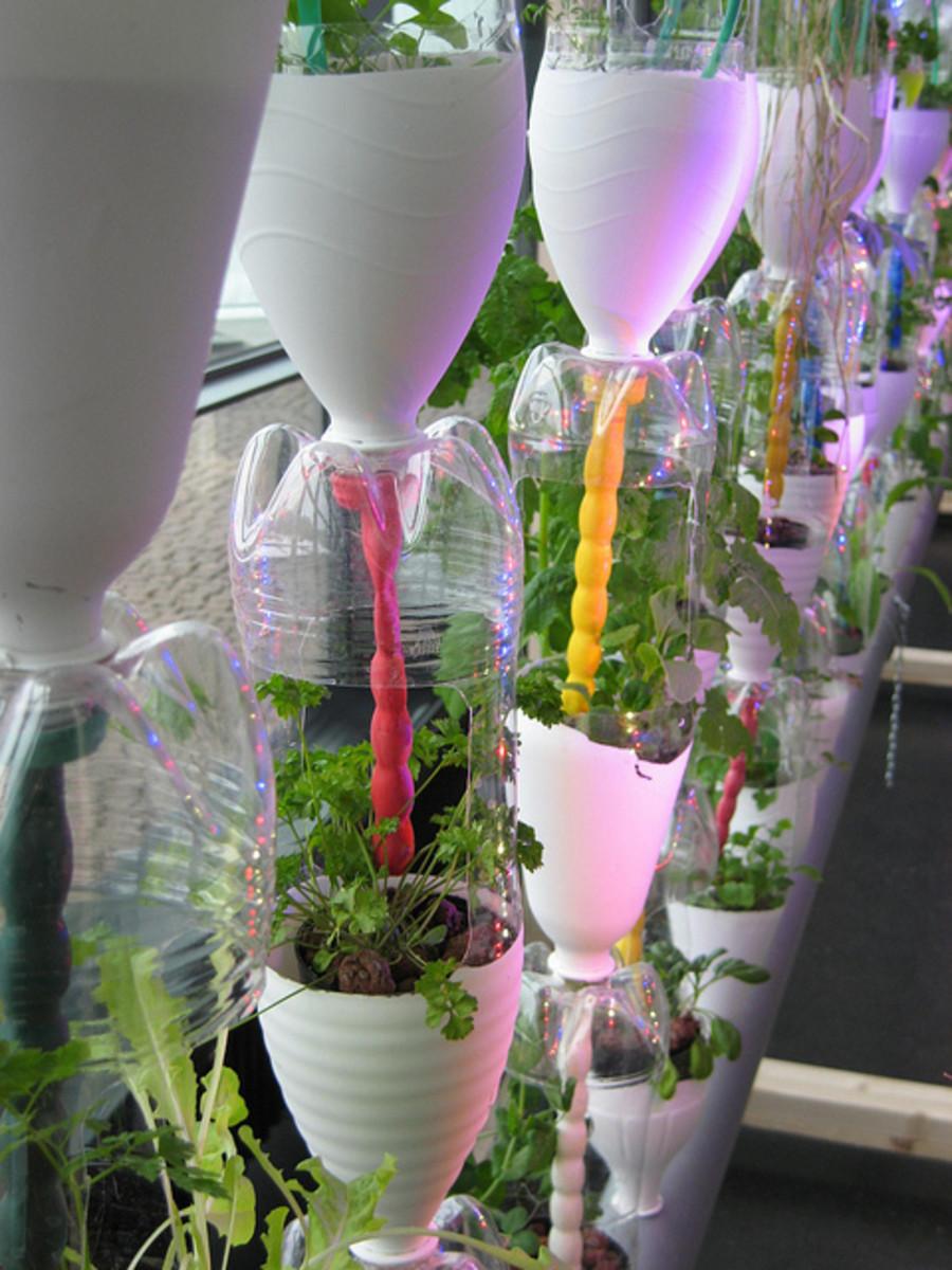 installing a vertical garden indoors can you make it happen. Black Bedroom Furniture Sets. Home Design Ideas