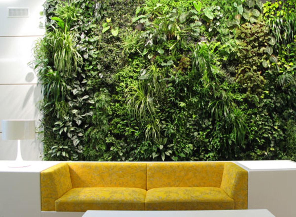 Installing A Vertical Garden Indoors Can You Make It Happen